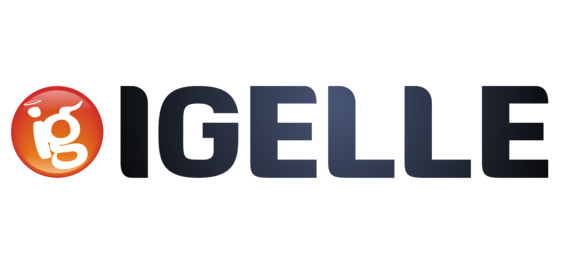 Igelle: Lightweight Operating System for portable computers